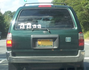 Creative license…plates and bumper stickers