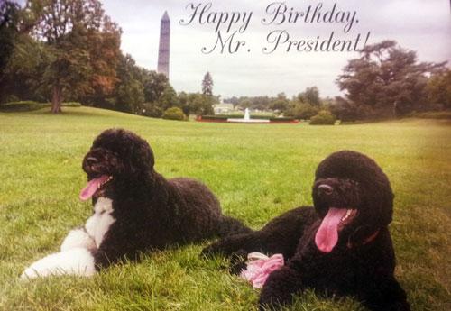 Happy Birthday from Bo and Sunny
