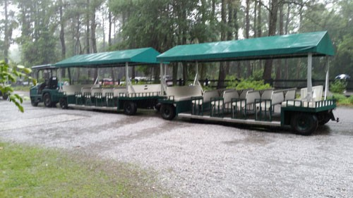 Magnolia Plantation train