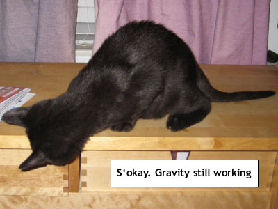 Yep, gravity is still working